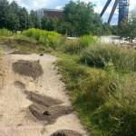 Streckenpflege Bikepark Singletrail 10
