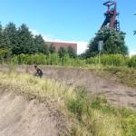 Streckenpflege Bikepark Singletrail 16