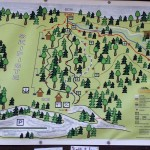 Bikepark Beerfelden 41