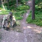 Bikepark Schwarzwald Freeride Turbomatik 08
