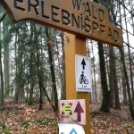 Flowtrail Bad Endbach 028