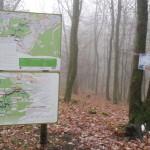 Flowtrail Bad Endbach 144