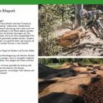 Planung Trailpark
