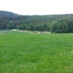 Fahlenscheid Bikepark Downhill Olpe 01