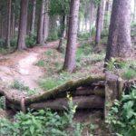 Fahlenscheid Bikepark Downhill Olpe 11