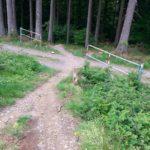 Fahlenscheid Bikepark Downhill Olpe 22