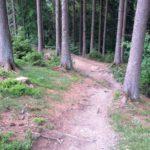 Fahlenscheid Bikepark Downhill Olpe 23