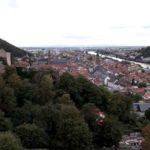 Pumptrack Heidelberg Mountainbike Rampe Bauen Bmx 6