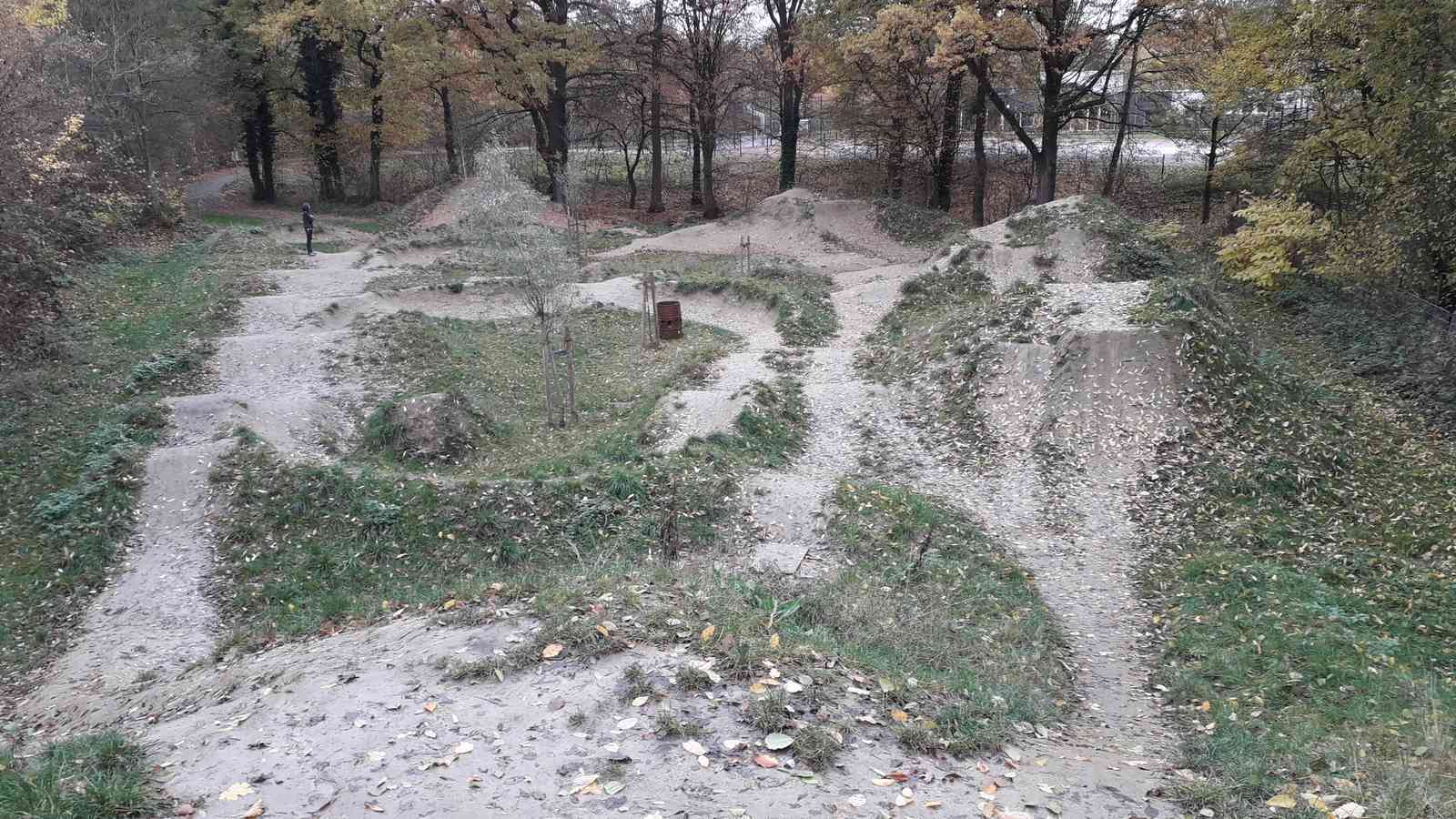 Dirtpark Muenster Berg Fidel 19