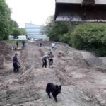 Pumptrack Bauen Planung Dirtpark Guentersleben Wuerzburg 23