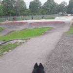 Skate Bikepark Fuessen Pumptrack Bauen Kosten Preise 21