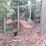 Schwarzwald Bikepark Engelsbrand Pumptrack Flowtrail Dirtpark MTB Trails 06