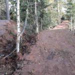 Schwarzwald Bikepark Engelsbrand Pumptrack Flowtrail Dirtpark MTB Trails 14
