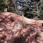 Schwarzwald Bikepark Engelsbrand Pumptrack Flowtrail Dirtpark MTB Trails 18