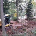 Schwarzwald Bikepark Engelsbrand Pumptrack Flowtrail Dirtpark MTB Trails 22