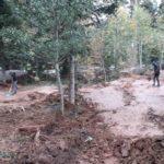 Schwarzwald Bikepark Engelsbrand Pumptrack Flowtrail Dirtpark MTB Trails 28