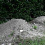Bikepark Oberammergau Flowtrail Bayern Downhill Alpen 03