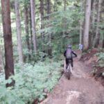 Bikepark Oberammergau Flowtrail Bayern Downhill Alpen 06