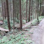 Bikepark Oberammergau Flowtrail Bayern Downhill Alpen 19
