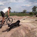 Trailpark Bad Frankenhausen Thueringen Bikepark Jumpline Pumptrack Flowtrail Mountainbikestrecken 34