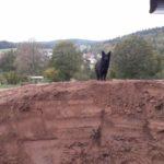 Backyard Pump-track Im Garten Bauen Jossgrund Spessart 07