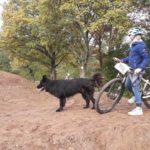 Backyard Pump-track Im Garten Bauen Jossgrund Spessart 19