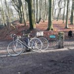 Dirtpark Hamburg Trailpark Mountainbike Trails Legalisieren 01