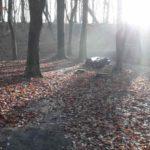 Dirtpark Hamburg Trailpark Mountainbike Trails Legalisieren 03
