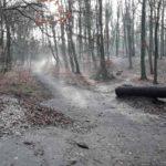 Dirtpark Hamburg Trailpark Mountainbike Trails Legalisieren 05