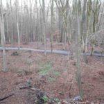 Dirtpark Hamburg Trailpark Mountainbike Trails Legalisieren 09