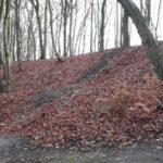 Dirtpark Hamburg Trailpark Mountainbike Trails Legalisieren 10
