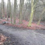 Dirtpark Hamburg Trailpark Mountainbike Trails Legalisieren 11