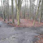 Dirtpark Hamburg Trailpark Mountainbike Trails Legalisieren 12
