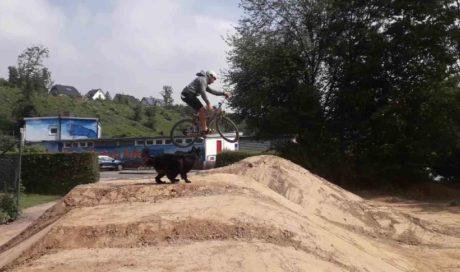 Dirtpark Wickede / Ruhr | Dirts, Pumptrack & Tricksprung, Dirtbikeanlage Dirtanlage